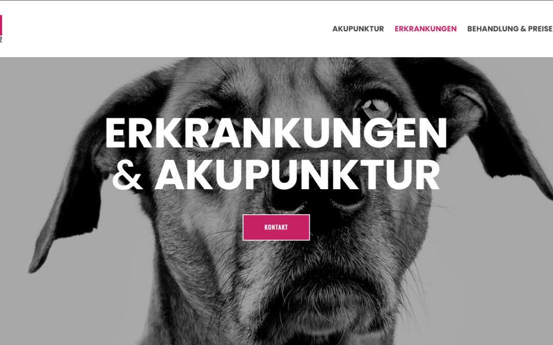 Webseite für Akupunktur